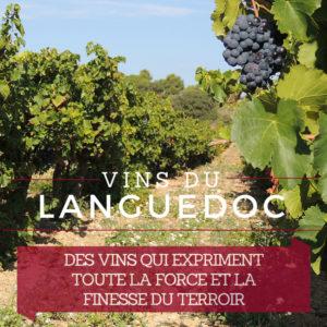 De Grands Vins du Minervois et Languedoc plein de force et de finesse @ChateaudeParaza