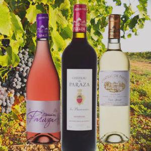 Grands Vins du Languedoc direct Chateau