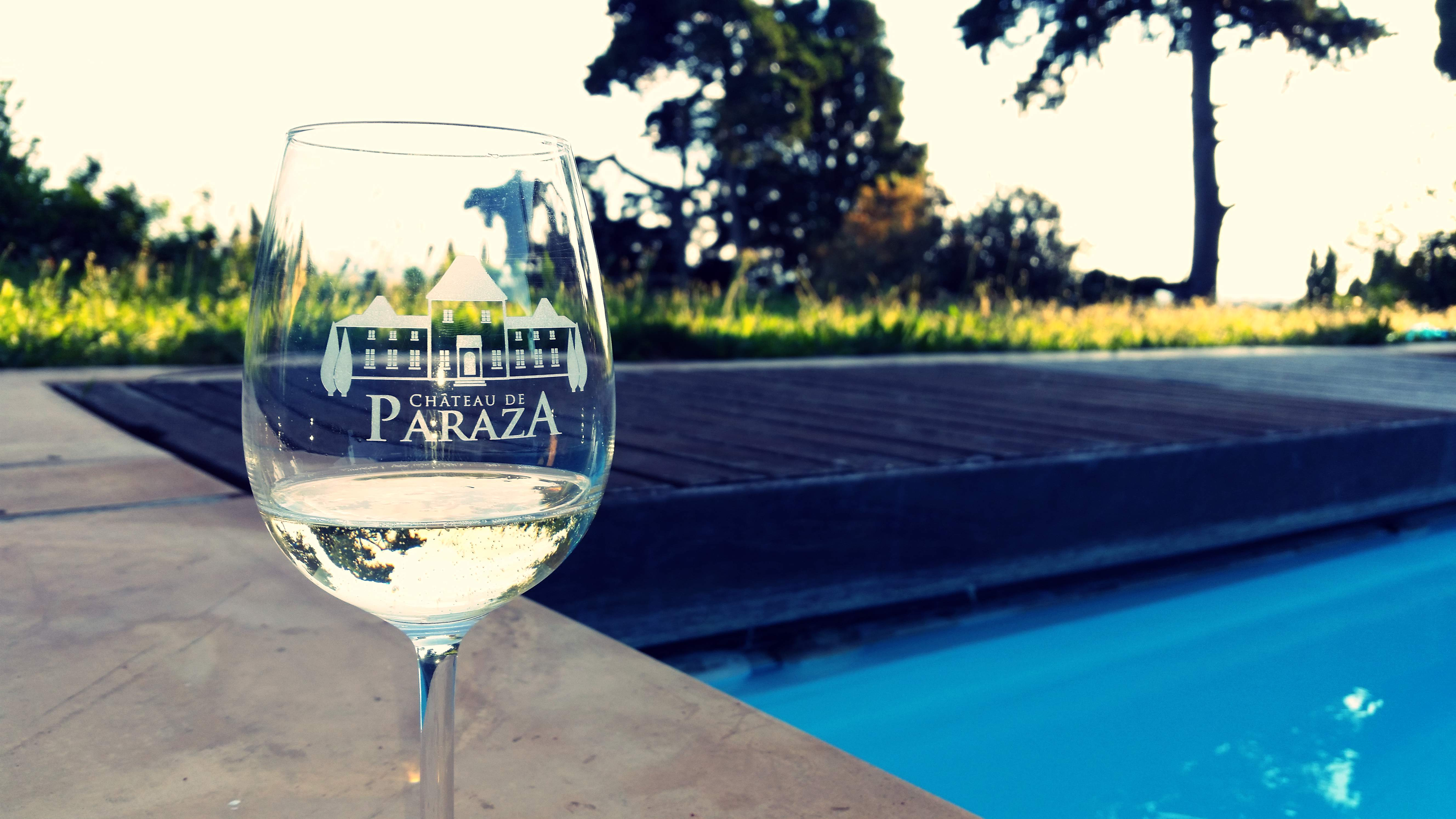Chateau de Paraza by the pool