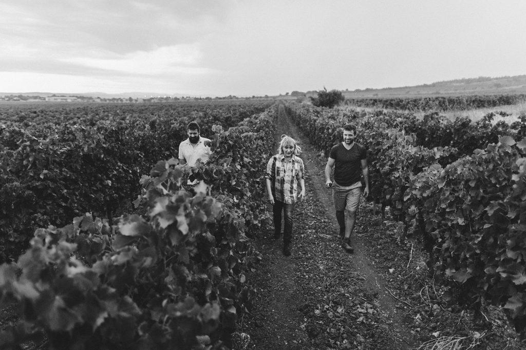 vigneron viticulteurs