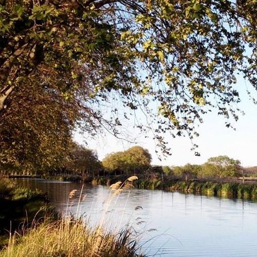 Explorez les environs et les bords du Canal du Midi. Une escapade en pleine nature pour s'évader du quotidien.
